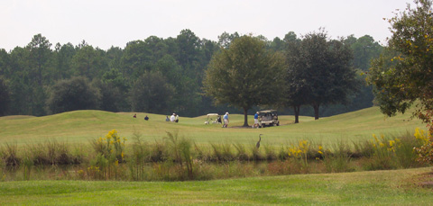 Black Creek Golf Course
